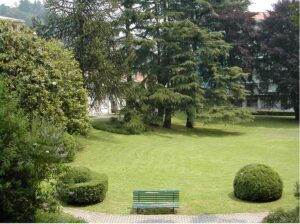 economia green: aree verdi